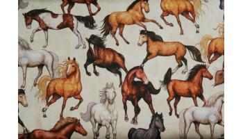 10cm Baumwolldruck braune Pferde auf Ecru (Grundpreis € 11,00/m)